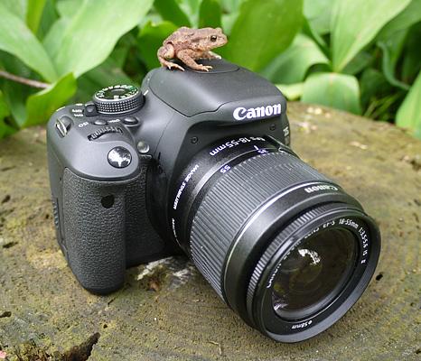 Canon 600D test